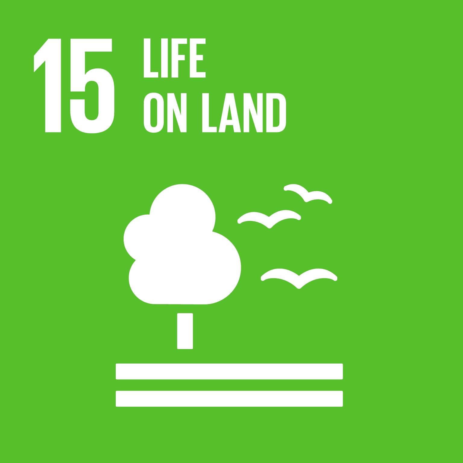 15 life on land
